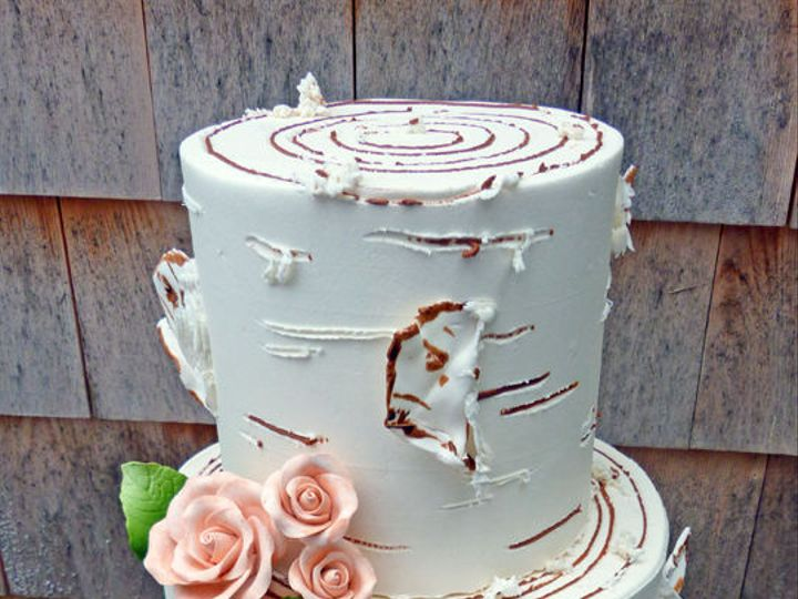 Tmx 1525294676 B0d29a4ca968d1a9 1525294672 D7d01ec5e4181370 1525294691885 26 6 Two Tiered Birc Rochester wedding cake