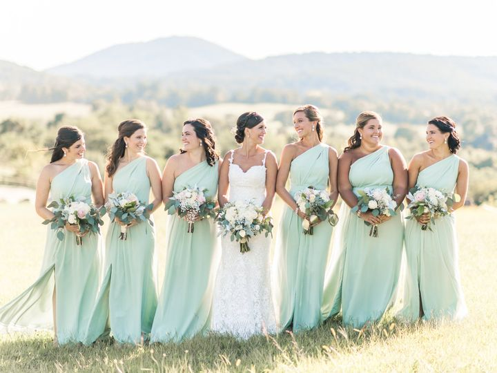 Tmx 3 Weddingparty 11 51 764470 Delaplane, VA wedding venue