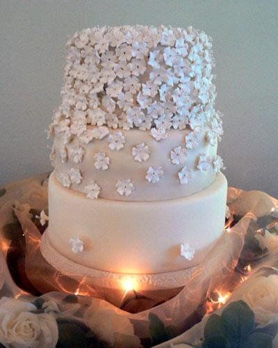 Tmx 1236624977766 Whiteflowerdrape L Bradenton, FL wedding cake