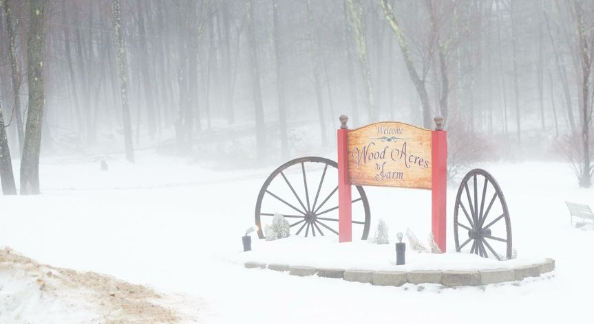 Winter at Wood Acres