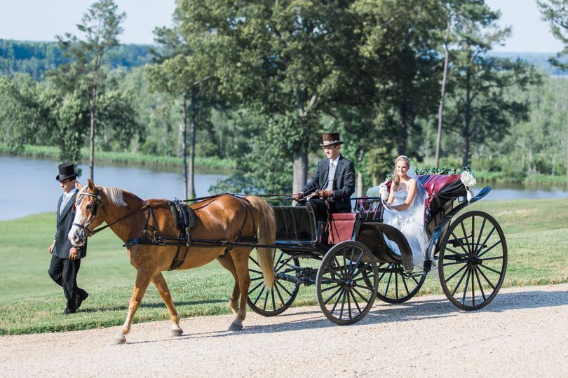 Wedding horse carriage