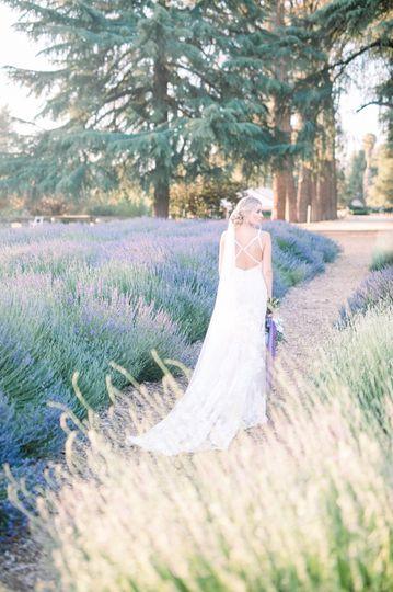 highland springs wedding 1 51 985770 1562004680