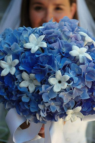 Tmx 1486492527603 Blue Wedding Flowers Selinsgrove, PA wedding florist