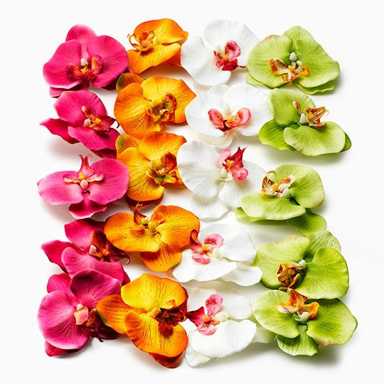 800x800 1420206997130 Silk Flower Pomander 914652ww; 800x800 1420207031922  Orchids 6739 Etjww ...