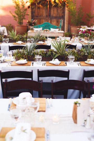 Eastland alley co flowers tucson az weddingwire 800x800 1487043740395 161105griffintsb0291 junglespirit Images