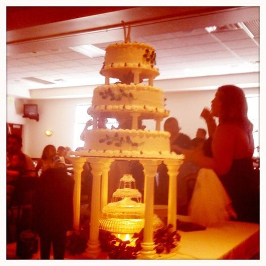 The cake with a fountain underneath! So neat!
