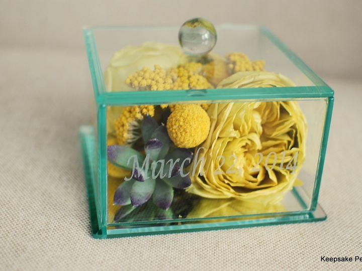 Tmx 1447197869320 5x5 Glass Box Kennett Square wedding florist