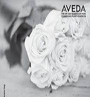 aveda wedding pic