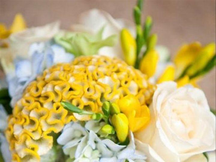 Tmx 1332957411021 Weddingwire1 Bloomington, MN wedding florist