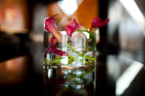 Tmx 1333145188936 Bloom.002 Bloomington, MN wedding florist