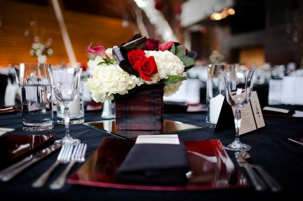 Tmx 1333145251683 Bloom.013 Bloomington, MN wedding florist
