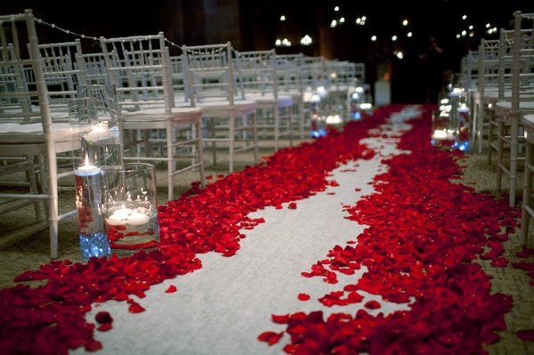 Tmx 1333145286385 Bloom.028 Bloomington, MN wedding florist