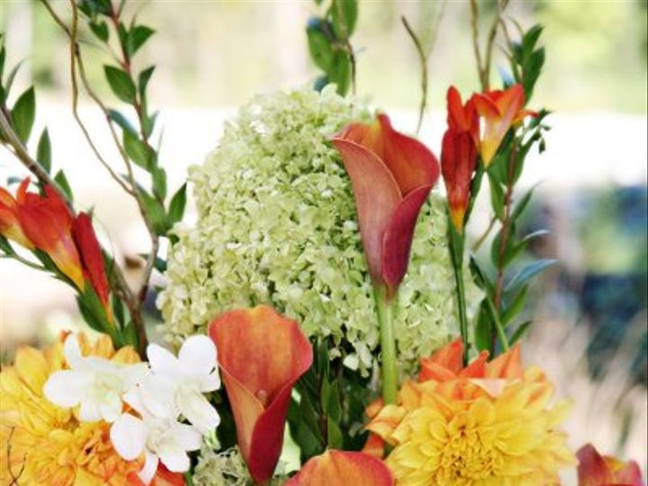 Tmx 1329850459485 IMG0741LR Seattle wedding florist