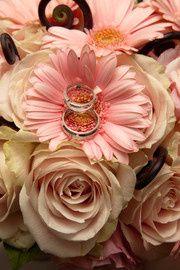 Tmx 1428941852492 200805 4037740194270 Langhorne, Pennsylvania wedding florist