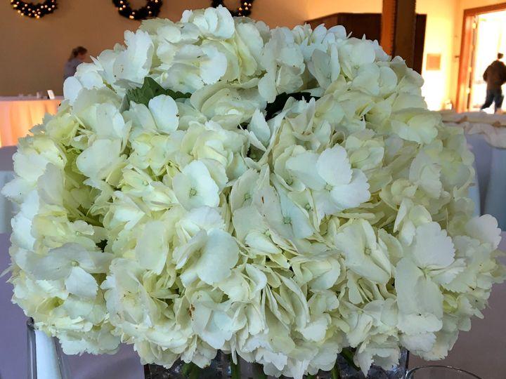 Tmx 1449941465832 Hyd Cube Langhorne, Pennsylvania wedding florist