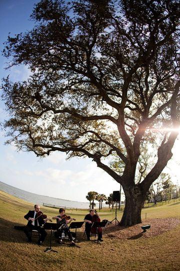 String trio Pensacola Country