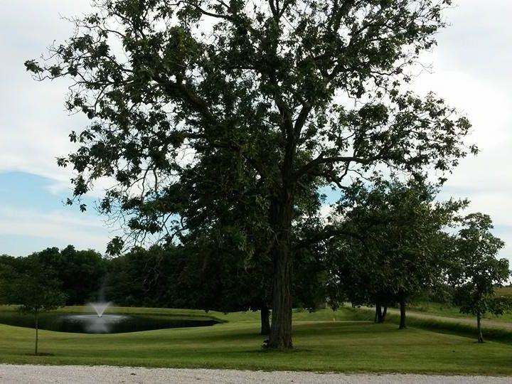 Tmx 1416318741096 Pond And Tree Lockridge, IA wedding venue