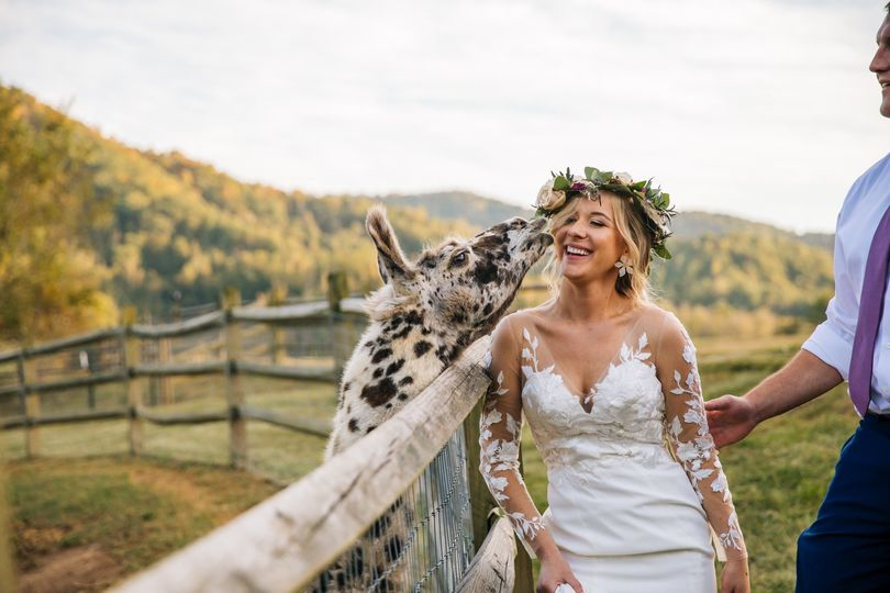 dustin dalia wedding preview 0m4a3109 51 522280 158215337841962