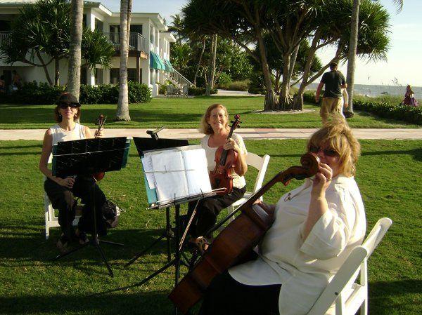String trio garden performance