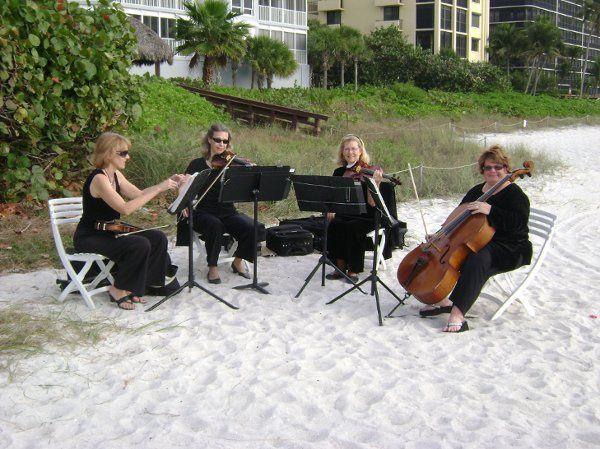 String quartet beach performance