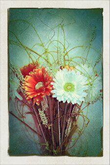 Long Stemmed Gerber Daisy Summer Bouquet