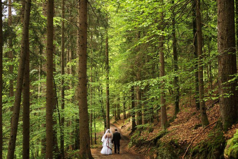 walkingthroughforest