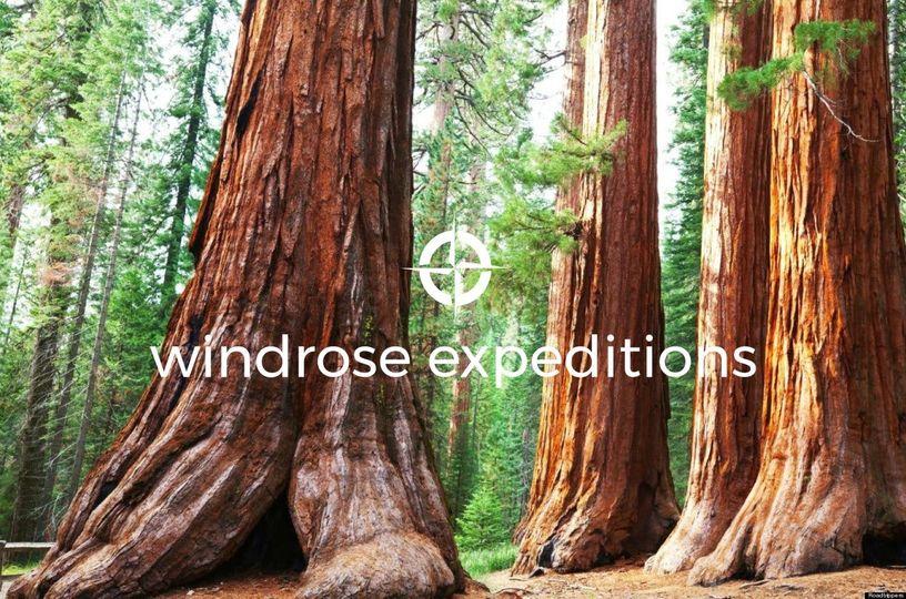 aa21cf8114a4a4c5 Redwoods w logo