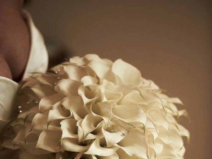 Tmx 1341961251404 294288267720896599469730400962n Philadelphia, Pennsylvania wedding florist