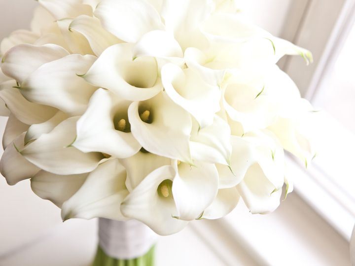 Tmx 1387843501852 000 Philadelphia, Pennsylvania wedding florist