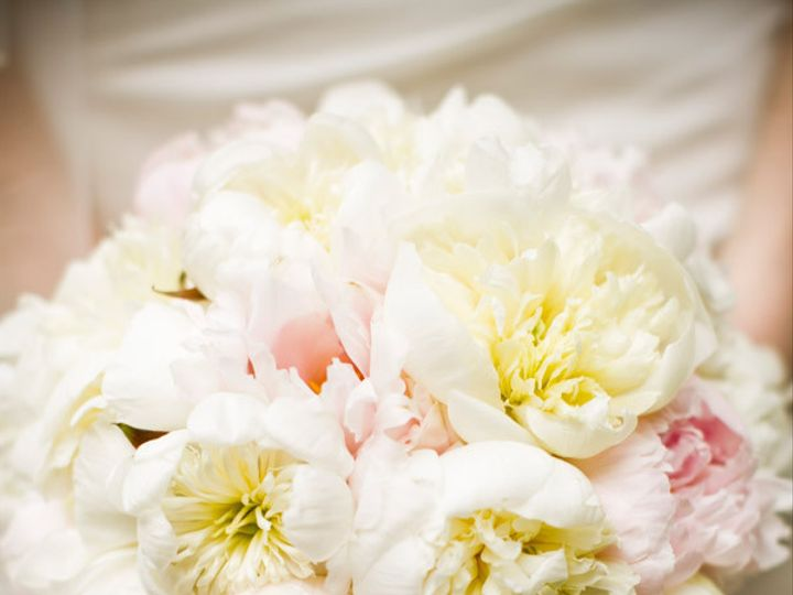 Tmx 1387843610819 All Professional New Photos 09 Philadelphia, Pennsylvania wedding florist