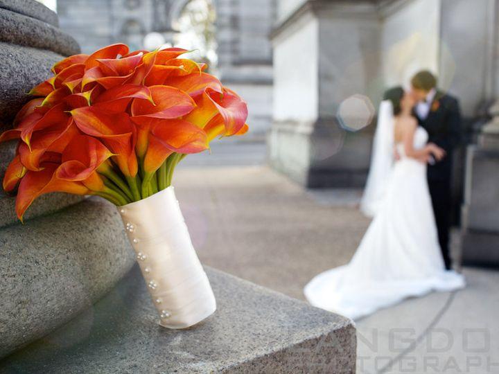 Tmx 1387843666632 All Professional New Photos 60 Philadelphia, PA wedding florist