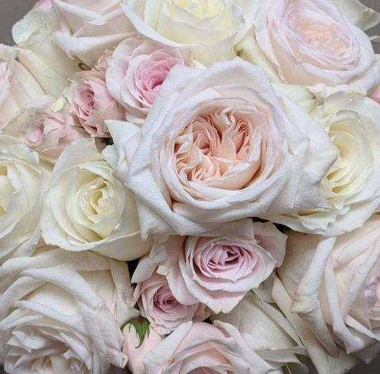 close up of rose bouquet 51 324480