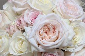 Blumengarten Florist