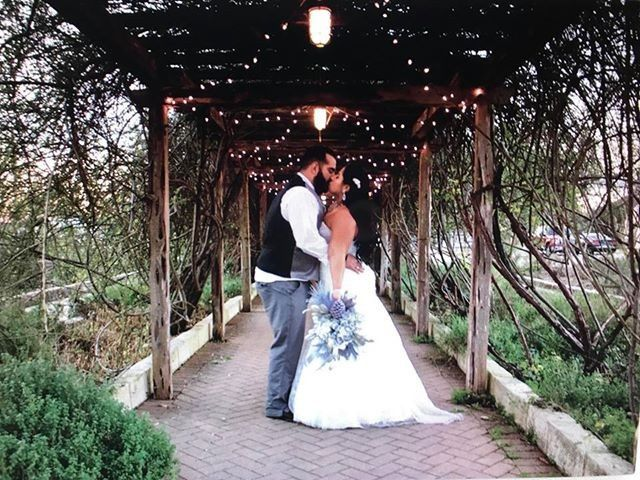 Kiss in the arbor