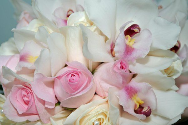 The bride's bouquet was filled with pink and white orchids held softly in a bed of roses.