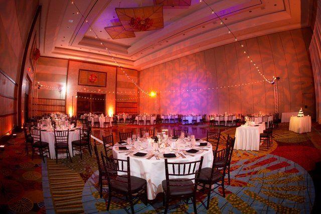 The Peabody Hotel Orlando Our Vividlite LED up lighting  Market lights by Get Lit