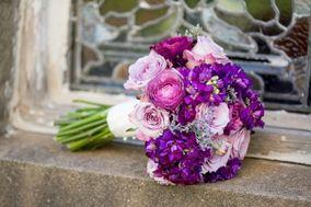 Mystical Rose Flowers