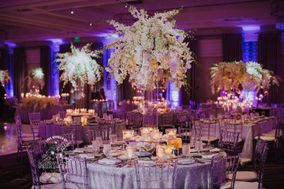 Blue Orchid Events & Design