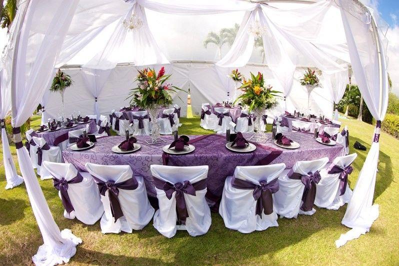 Violet table cloth