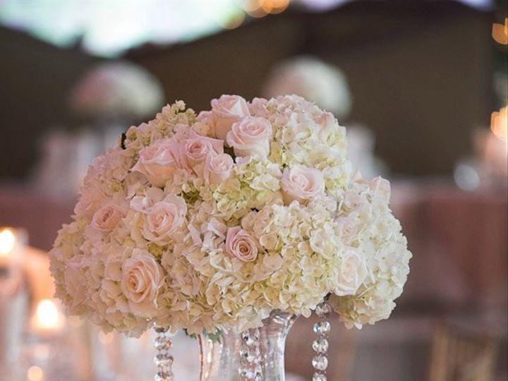 Tmx 1429105357346 400829480506585305679317198531n 1 Bristol, Connecticut wedding florist