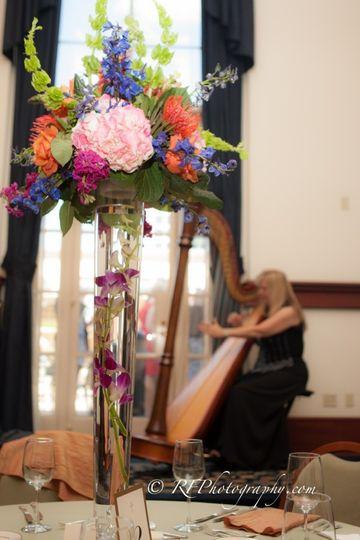 Harpist Victoria Lynn Schultz performing for an event at Universal's  Portofino Hotel