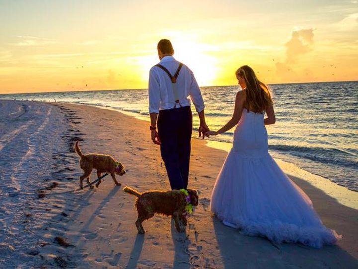 Tmx 46939903 2295945060692321 2831091731120783360 N 51 700880 Wesley Chapel, FL wedding officiant