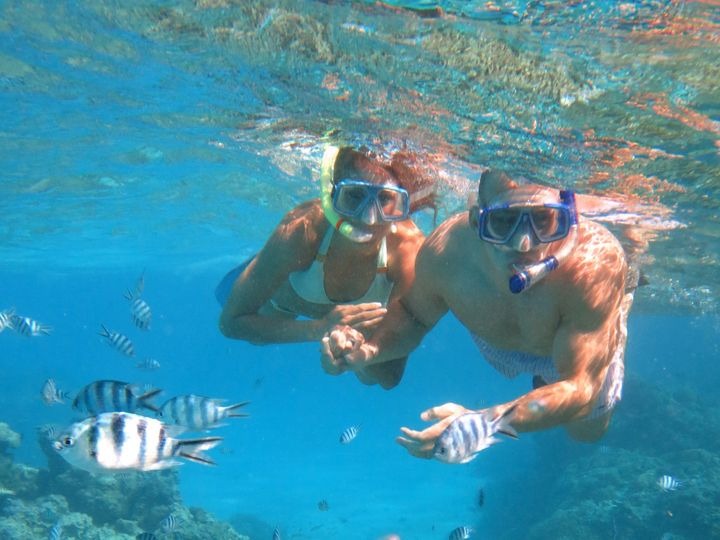 Tmx 1388855076154 Snorkeling Tour North Brunswick, NJ wedding travel