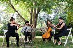 Hire Juilliard Performers image