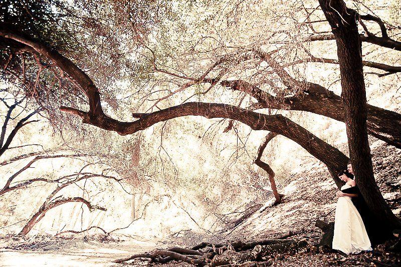 Copyright Syds Designs  www.blog.sydsdesigns.com
