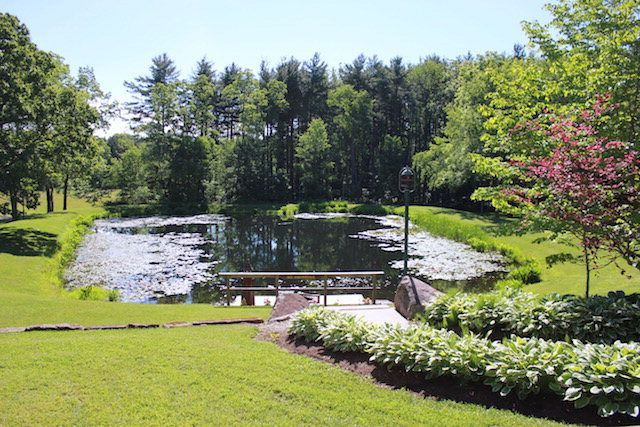 f22536dc6b82d6b4 1516985428 a3872e84d46bd0a5 1516985407952 5 Pond from Patio 2
