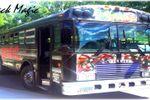 Half Price Party Bus image