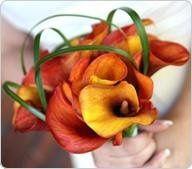 mango calla lily bouquet 192