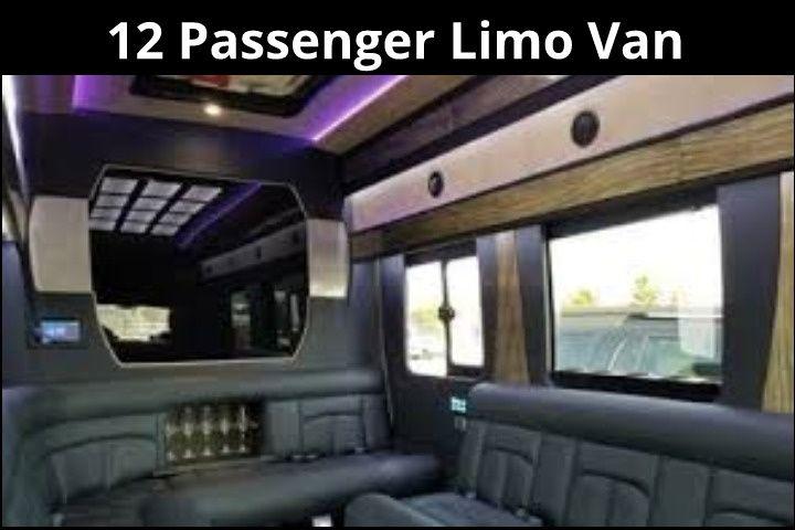 12 Passenger Limo Van