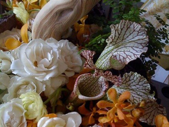 Tmx 1263946389766 IMG05031 Granby wedding florist